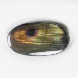 Oval spectrolite 2